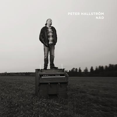 384996_PeterHallstrom-Nad